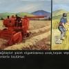 Türkiye'de Tahıl Tarımı