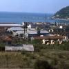 Cide Tomruk Fabrikası