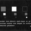 Resimde Kompozisyon ve Leke Düzeni
