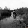 Eber Gölü, 1971
