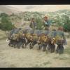 Bitlis Folklor Ekibi, 1974