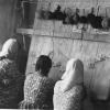 Toplum Kalkınması Semineri, Altınözü, 1964