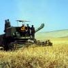 Gaziantep'te Tarım, 1974