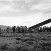 Türkkuşu, 1953