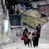 Amasya, 1977
