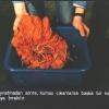 Sıcak Batik