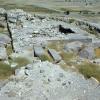 Erzincan, Altıntepe Urartu Şehri