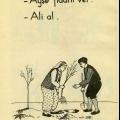 Alfabe, 1981
