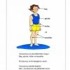 Vücudumuzun Bölümleri