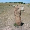 Mezar Taşları( Balbal'lar)