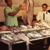 Balıkçı, Hatay, 1973