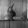 Burdur Müzesi Testi, 1972