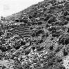 Burdur, Cibra harabeleri, 1972