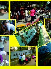 istanbul -Kadıköy 29 Ekim ilkokulu olarak okulumuzun bahçesini güzelleştirdik