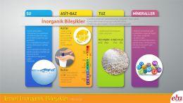 Temel inorganik bileşiklerden su,asit-baz, tuz ve mineraller anlatılmaktadır.