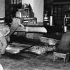 Rize, Çay İşlenme Aşamaları, 1975
