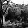 Urfa, Belediye Parkı, 1954