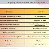 Kemosentez ve Karşılaştırma - 2