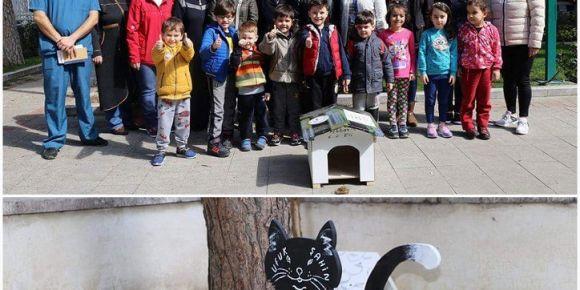 BENGİ Projesi kedi evi