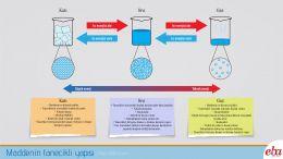 Maddenin sahip olduğu katı, sıvı ve gaz hallerinde ki özelliklerini ve tanecik yapısını açıklayan infografik çalışması