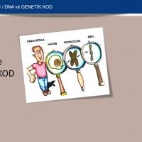 DNA ve Genetik Kod