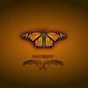 Arka Plan - Background - Kelebek - Butterfly