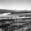 Muş, Arıncık Barajı