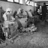 Bitlis, Sigara Fabrikası, 1974
