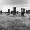 Bitlis, Selçuklu Mezarlığı, 1974