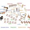 Orkestra Düzeni
