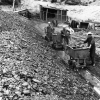 Diyarbakır, Hazro Linyit Kömürü, 1974