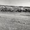 Erzurum, Tekman, 1975