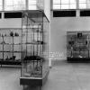 Isparta, Yalvaç Müzesi1972