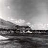 Erzurum, Ayçiçeği Harmanı, 1976