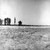 Kahramanmaraş, Elbistan Ovası, 1973