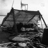 Giresun, Fındık Ayıklayanlar, 1975