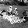 Giresun, Mısır Ayıklayanlar, 1975