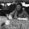 Giresun, Fisko Birlik Fındık Fabrikası, 1975