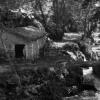 Hatay, Harbiye Şelalesi, 1952