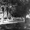 Hatay, Park, 1973