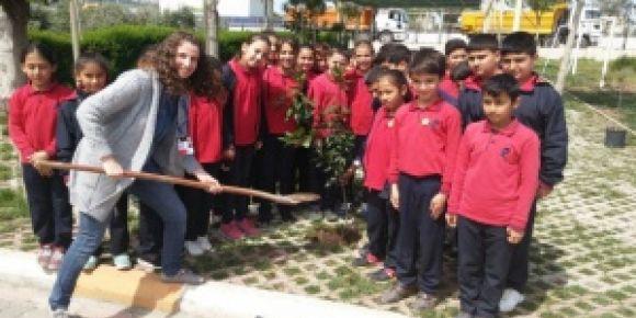 Okul bahçesine ağaç dikimi yaptık