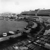 İzmir, Altın Yunus, 1979