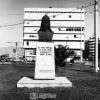 İzmir, Çaka Bey, 1981