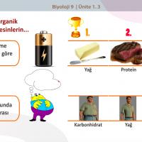 Organik Besinler Karbonhidratlar - 1