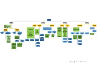 Bitkisel Dokular Kavram Haritası