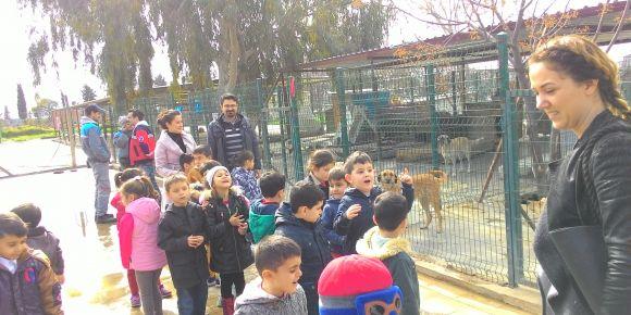 AYDIN-Didim Mesleki Anadolu ve Teknik Anadolu Lisesi uygulama sınıfının hayvan severliği