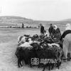 Kayseri, Tekir Yaylasında Yörükler, 1971