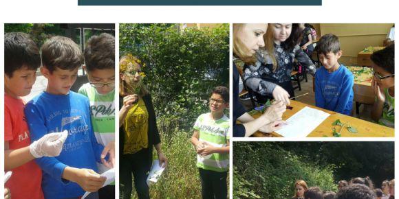 SAMSUN-Canik Tevfik İleri Ortaokulunda 5 Haziran Dünya Çevre Günü etkinlikleri
