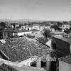 Samsun, Bafra, 1952