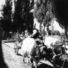 Kütahya, Yöre Halkı, 1980